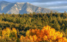 8 Ways to Enjoy Fall Color in Northern New Mexico